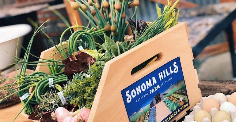 Sonoma_Hills_Farm_12.jpg