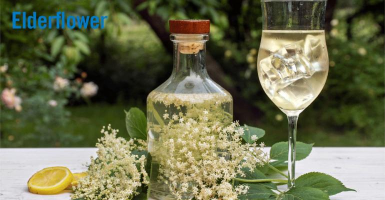elderflower-2-syrup.png