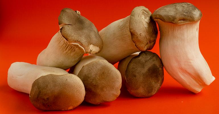 trumpet-mushrooms-flavor-of-the-week.png