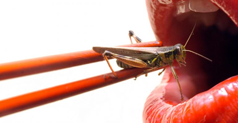 More chefs have bugs on the brain