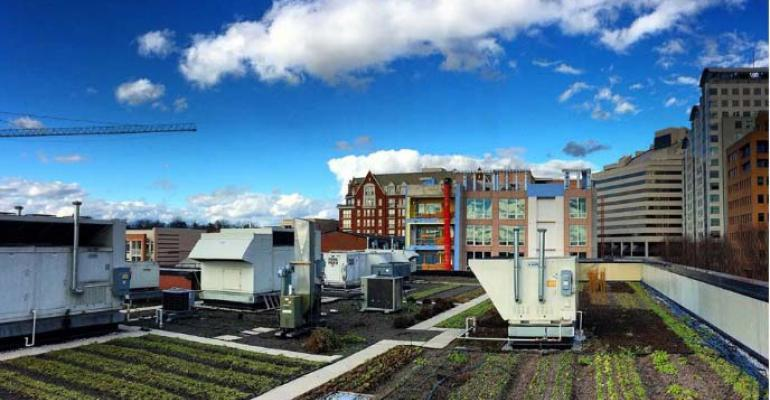 Up Top Acres designs and operators commercial rooftop gardens like this one in Washington DC