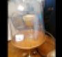 restaurant-hospitality-visits-felix-promo.png
