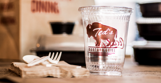 teds-compostable-cup.png