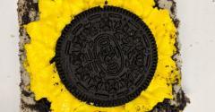Arynnes-sunflower.jpg