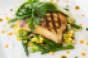 Grilled_Gulf_Wahoo-5.png