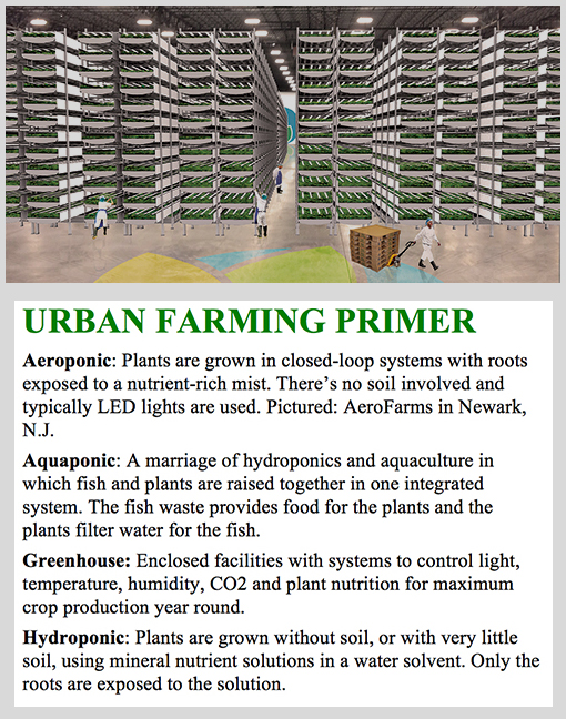 Ucour vision was always to have a system that could scale - Industriel urban farm cuisine los angeles ca ...