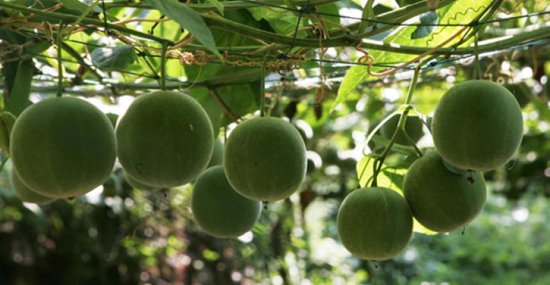 Monk fruit is being turned into an alternative sweetener