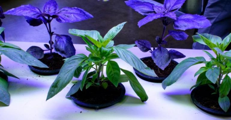A hydroponic garden was among exhibits at the recent NRA Show devoted to sustainability