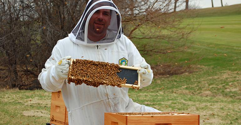 Hilton ChicagoOak Brook Hills executive chef Sean Patrick Curry with some of his 100000 honey bees