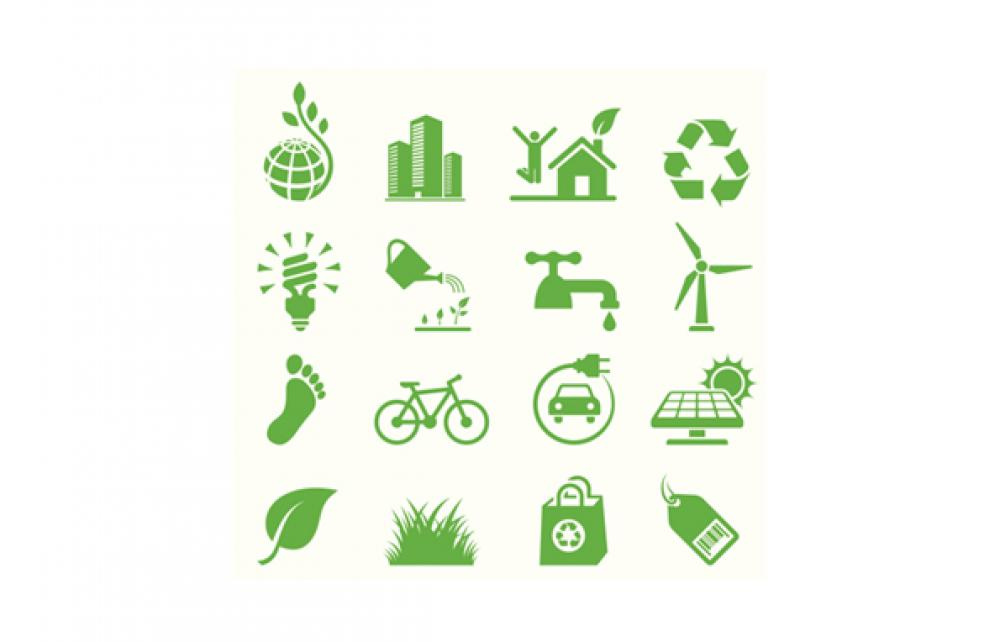 6 steps to sustainability